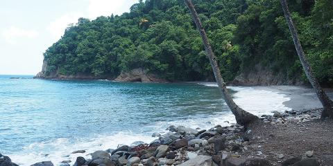 Anse du Ceron, Martinique